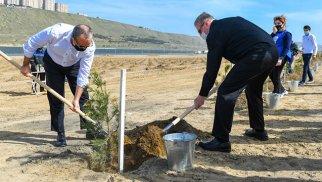 İki nazir ağacəkmə kampaniyasında - FOTOLAR