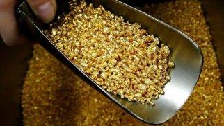 Azərbaycan qızıl hasilatını 0,8% artırıb