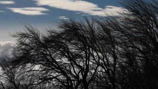 Sabah güclü şimal-qərb küləyi əsəcək – PROQNOZ