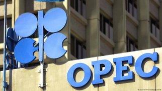 """Nazir: """"OPEC+"""" çərçivəsində verilən qərarların doğruluğu şübhə doğurmur"""
