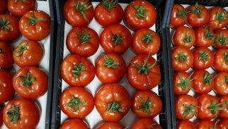 Pomidor nə üçün kəskin bahalaşıb? – Səbəblər açıqlanır (VİDEO)