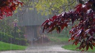 Sabah Bakıda yağış yağacaq - Dağlıq ərazilərdə isə... (PROQNOZ)