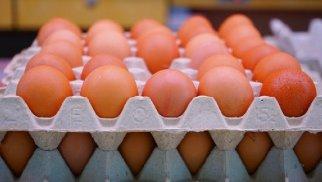 Yumurtanı bahalaşdıran səbəblər nədir? – Ekspert şərh etdi