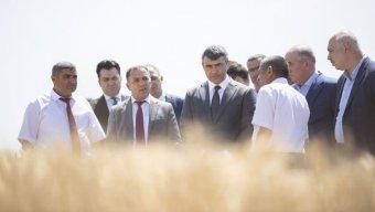 Qobustanda toxumçu fermerlərə yeni yerli və xarici taxıl sortları nümayiş olundu - FOTOLAR