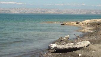 Arazboyu rayonlarda su qıtlığı yaşanır - VİDEO